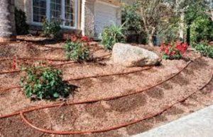اجرای آبیاری قطره ای هوشمند باغچه منازل