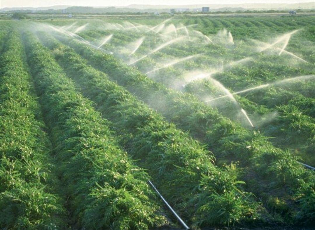 اجرای آبیاری قطره ای بارانی و تحت فشار با توجه به محدودیت منابع آب کشور و کم شدن آبهای زیرزمینی و موقعیت جقرافیایی کشور که گرم و خشک می باشد یک ضرورت گریز ناپذیر می باشد. با توجه به کم شدن منابع آبی و افزایش روز افزون جمعیت، سهم دسترسی انسان به منابع خاک کشاورزی و آب مطلوب برای کشاورزی رو به کاهش است. از این رو می توان فناوریهای نوینی آبیاری تحت فشار و قطره ای به وسیله لوله های پلی اتیلن را برای رویارویی با کاهش کمی و کیفی منابع آب و خاک برای رویارویی با این پدیده به کار گرفت.